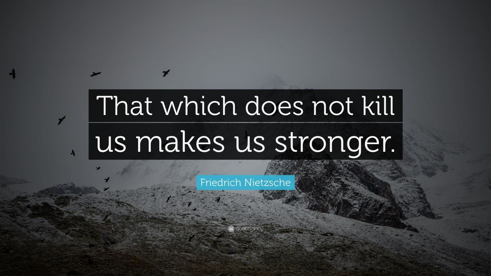 "Friedrich Nietzsche Quote: ""That which does not kill us makes us stronger."""