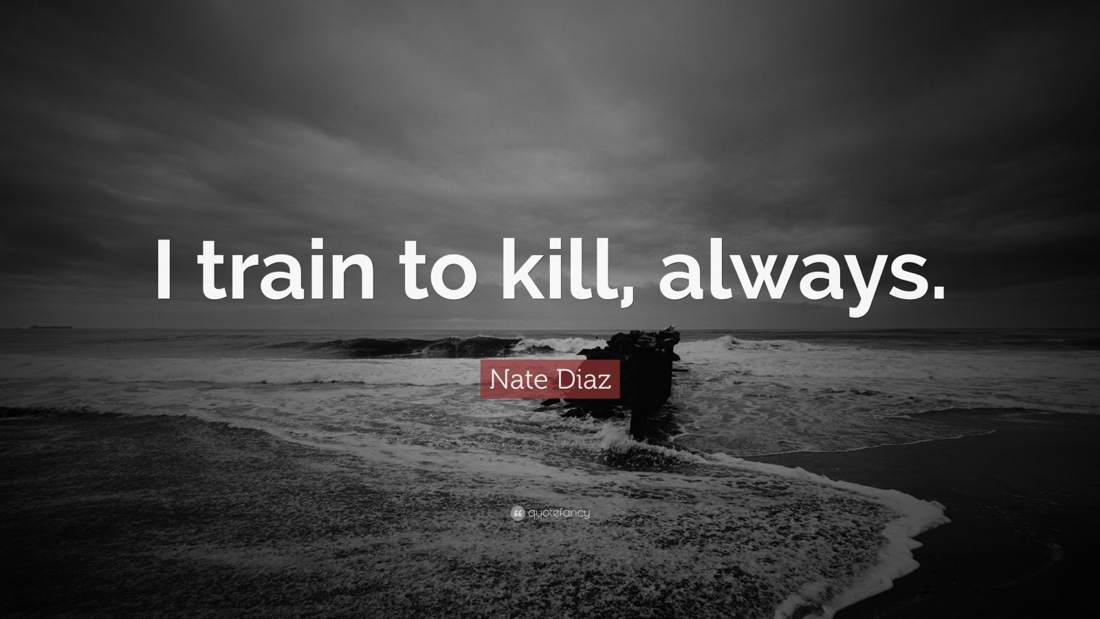 "Nate Diaz Quote: ""I train to kill, always."""