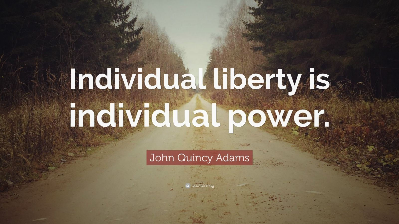"John Quincy Adams Quote: ""Individual liberty is individual power."""