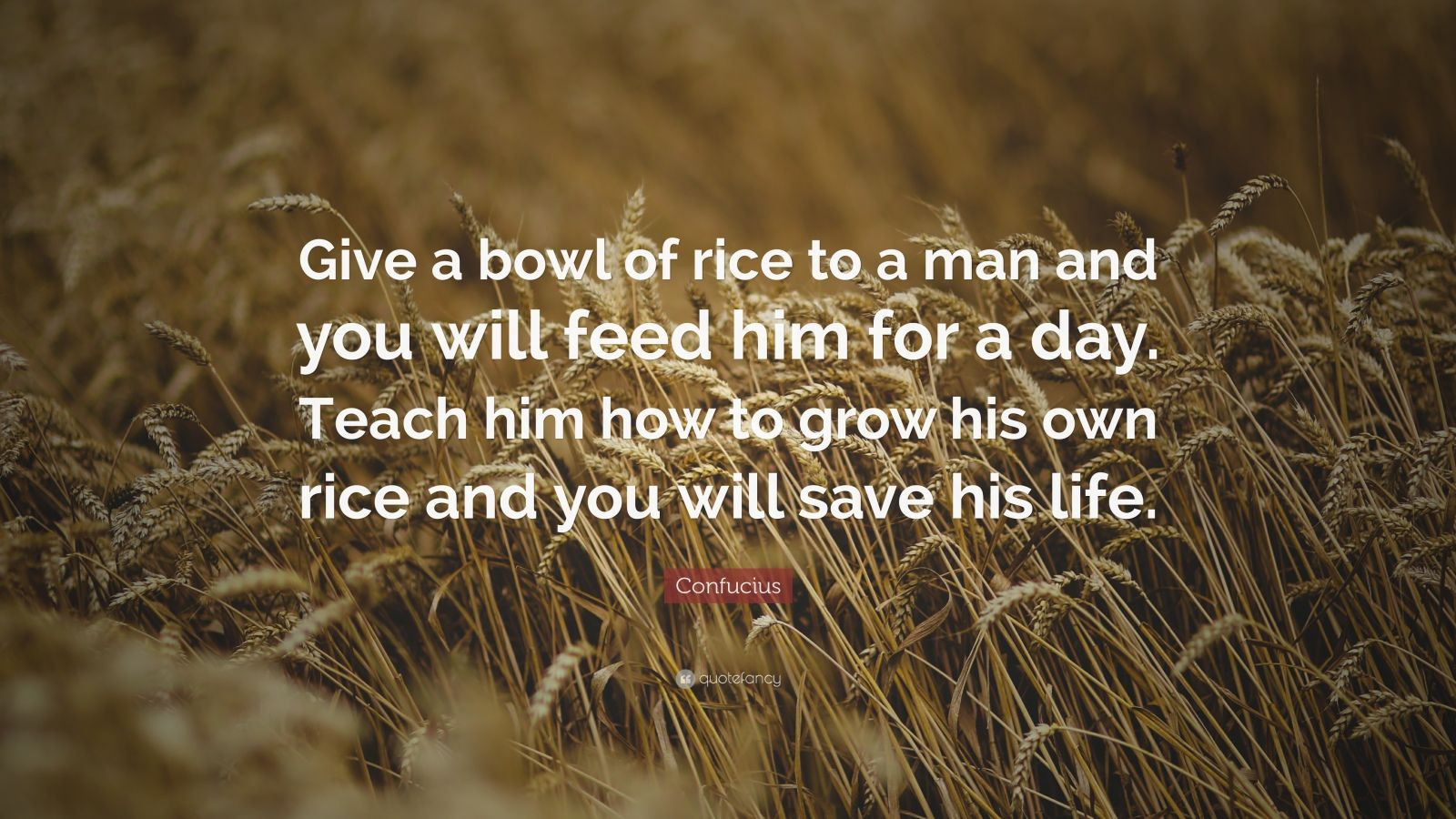 "Confucius Quote: ""Give a bowl of rice to a man and you will feed him for a day. Teach him how to grow his own rice and you will save his life."""