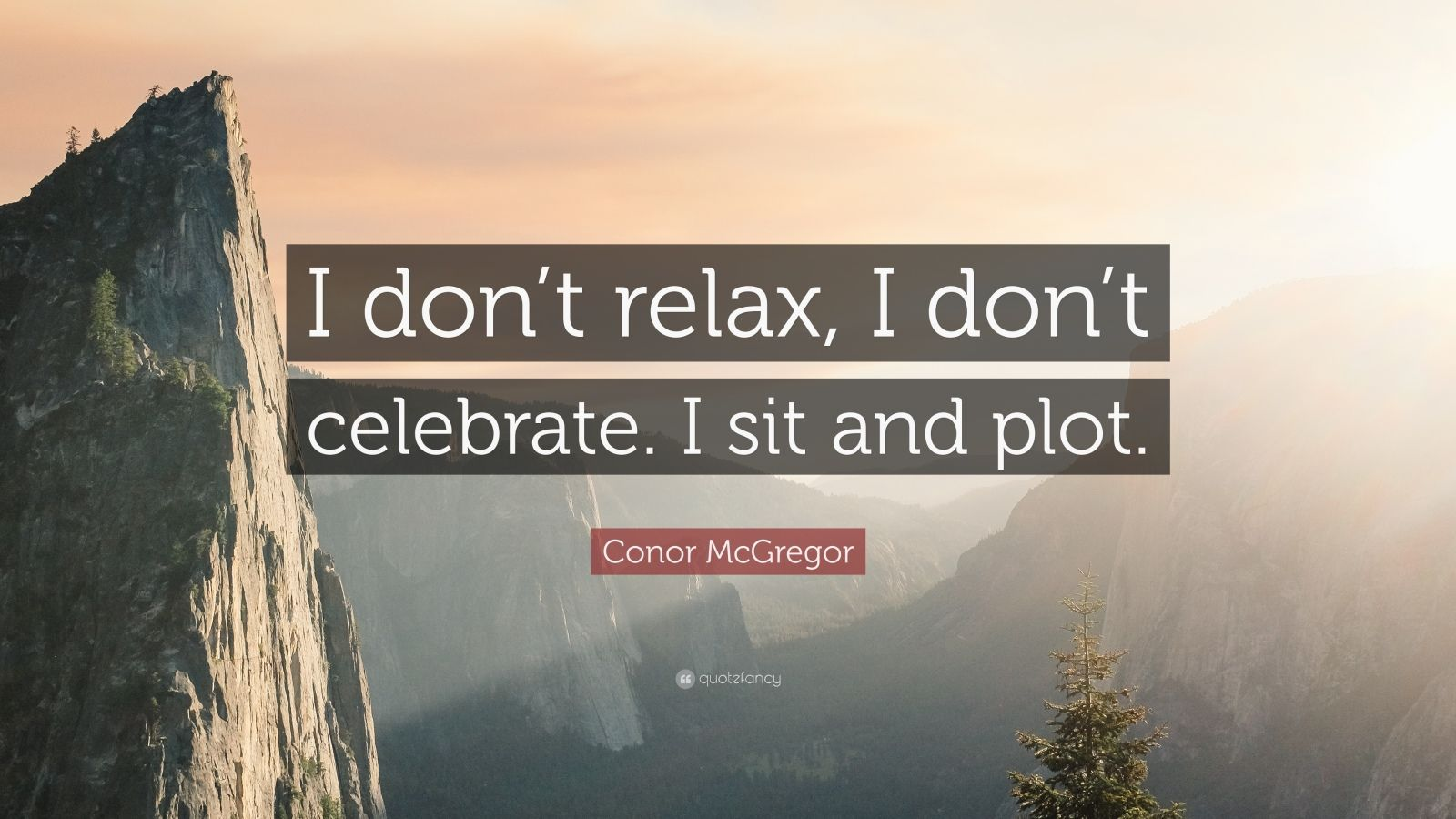 """Conor McGregor Quote: """"I don't relax, I don't celebrate. I sit and plot."""""""