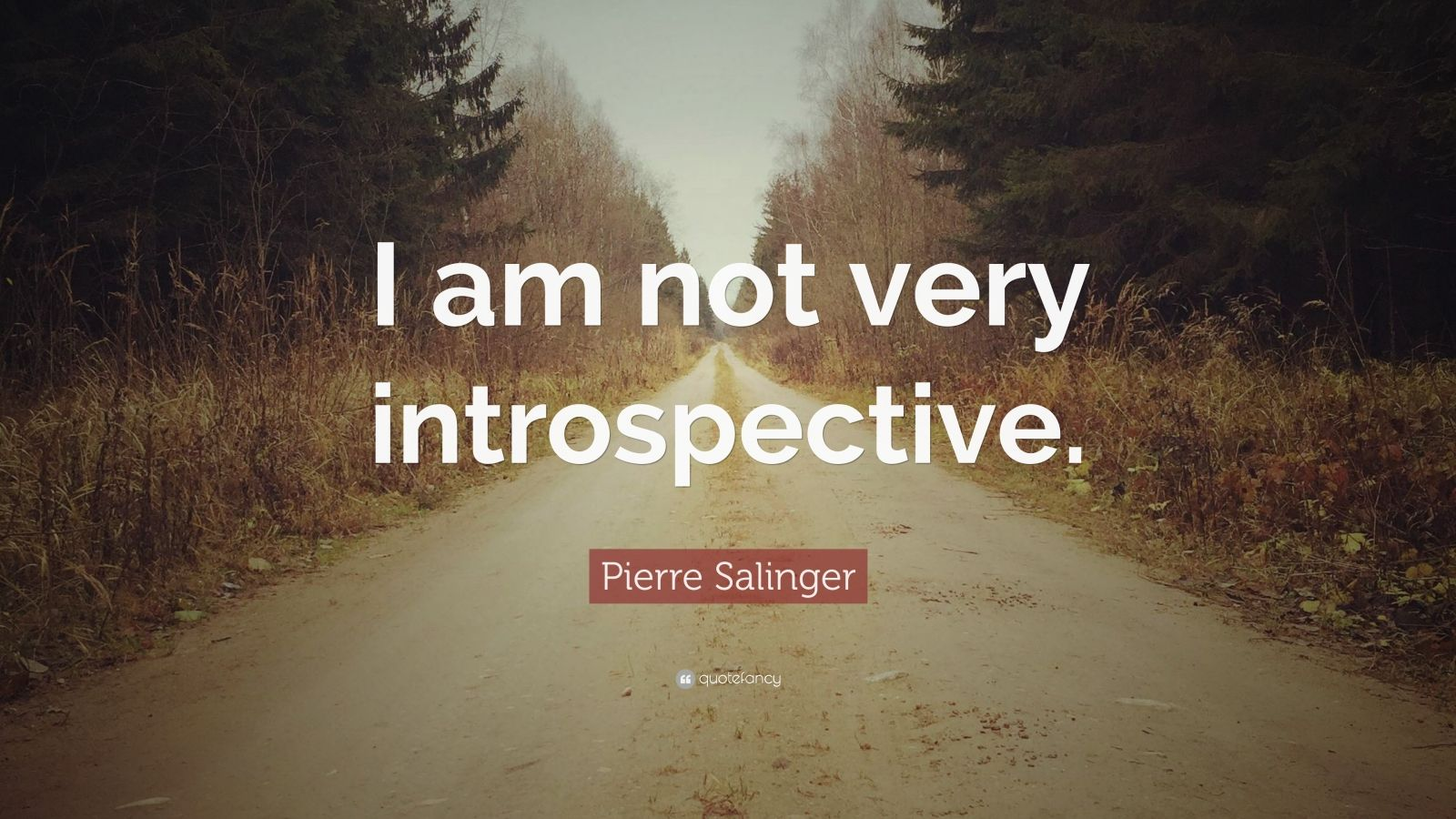 Pierre salinger quote i am not very introspective 7 wallpapers pierre salinger quote i am not very introspective publicscrutiny Images