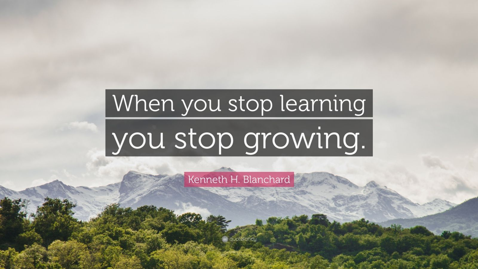 """Kenneth H. Blanchard Quote: """"When you stop learning you stop growing."""""""