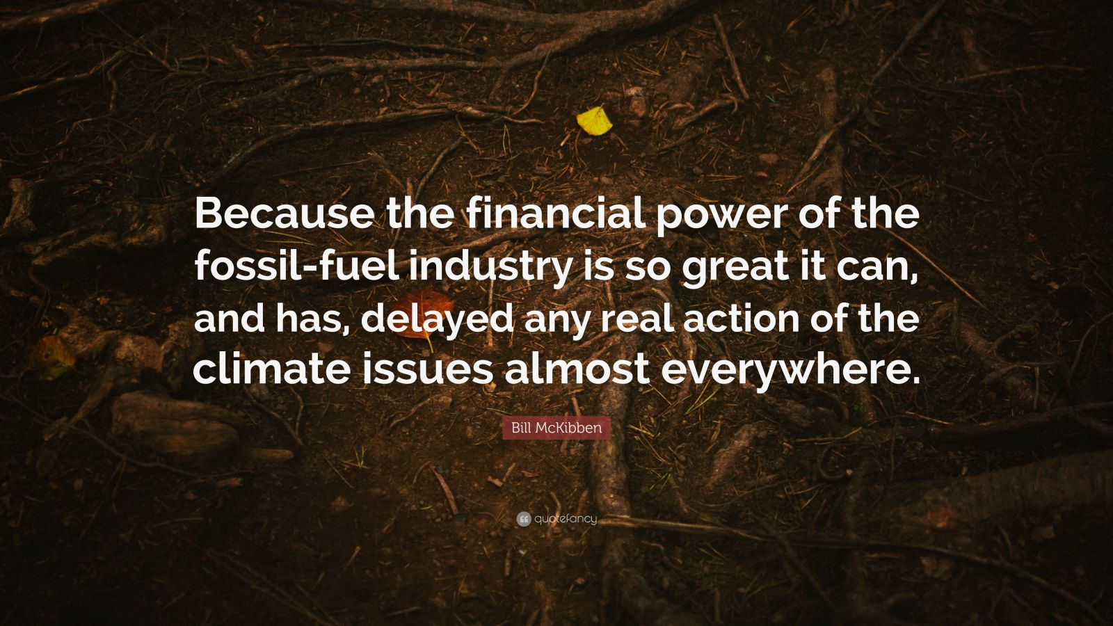 """Bill McKibben Quote: """"Because the financial power of the fossil-fuel industry is so great it can, and has, delayed any real action of the climate issues almost everywhere."""""""