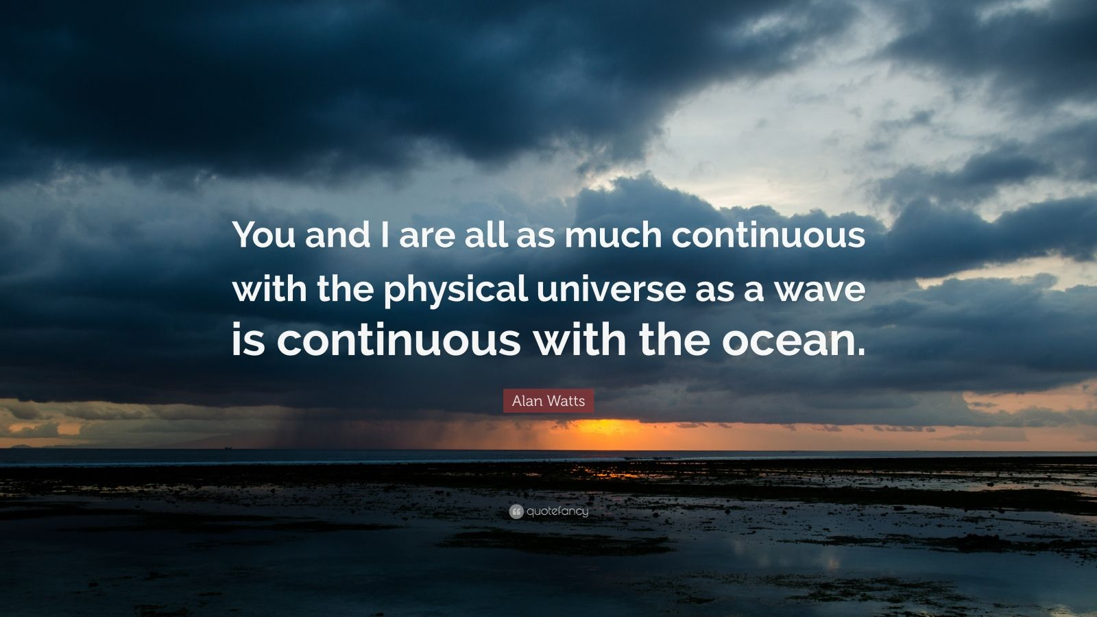 "Alan Watts Quote: ""You and I are all as much continuous with the physical universe as a wave is continuous with the ocean."""