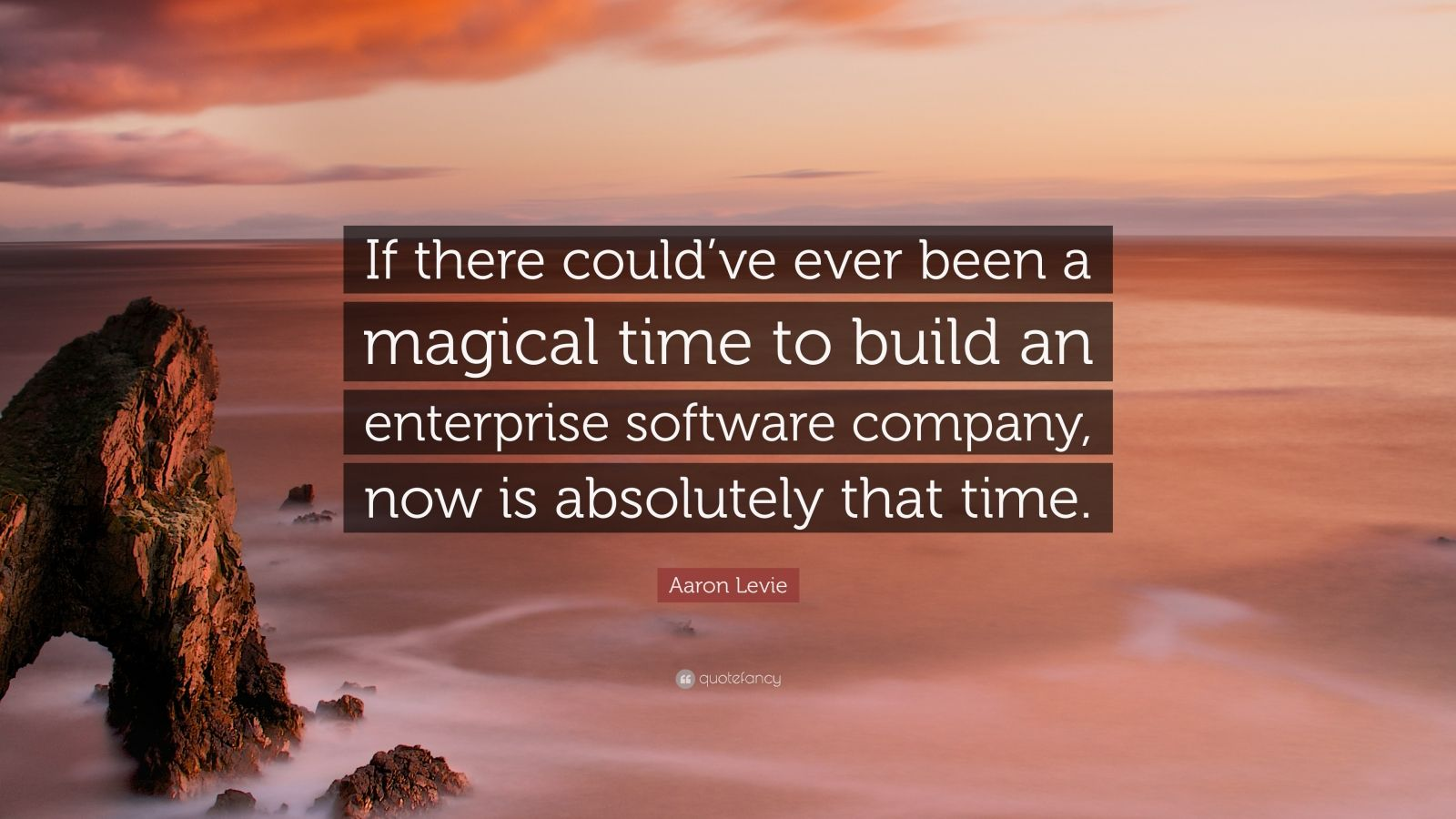 "Aaron Levie Quote: ""If there could've ever been a magical time to build an enterprise software company, now is absolutely that time."""