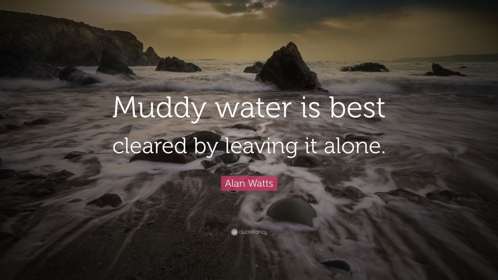 """Alan Watts Quote: """"Muddy water is best cleared by leaving it alone."""""""