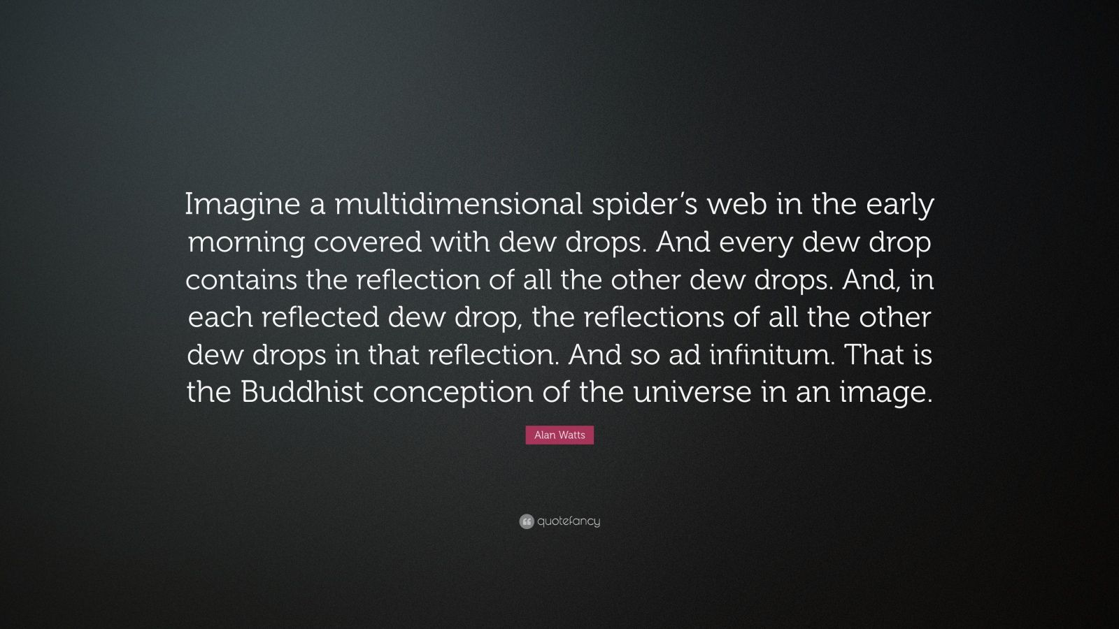 alan watts quote imagine a multidimensional spider s web in the early morning covered with dew. Black Bedroom Furniture Sets. Home Design Ideas