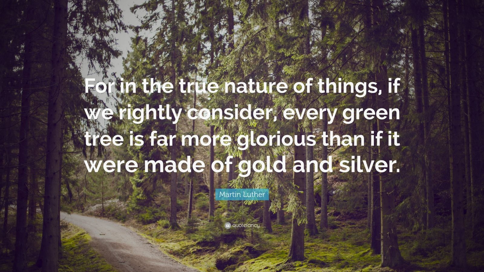 "Martin Luther Quote: ""For in the true nature of things, if we rightly consider, every green tree is far more glorious than if it were made of gold and silver."""