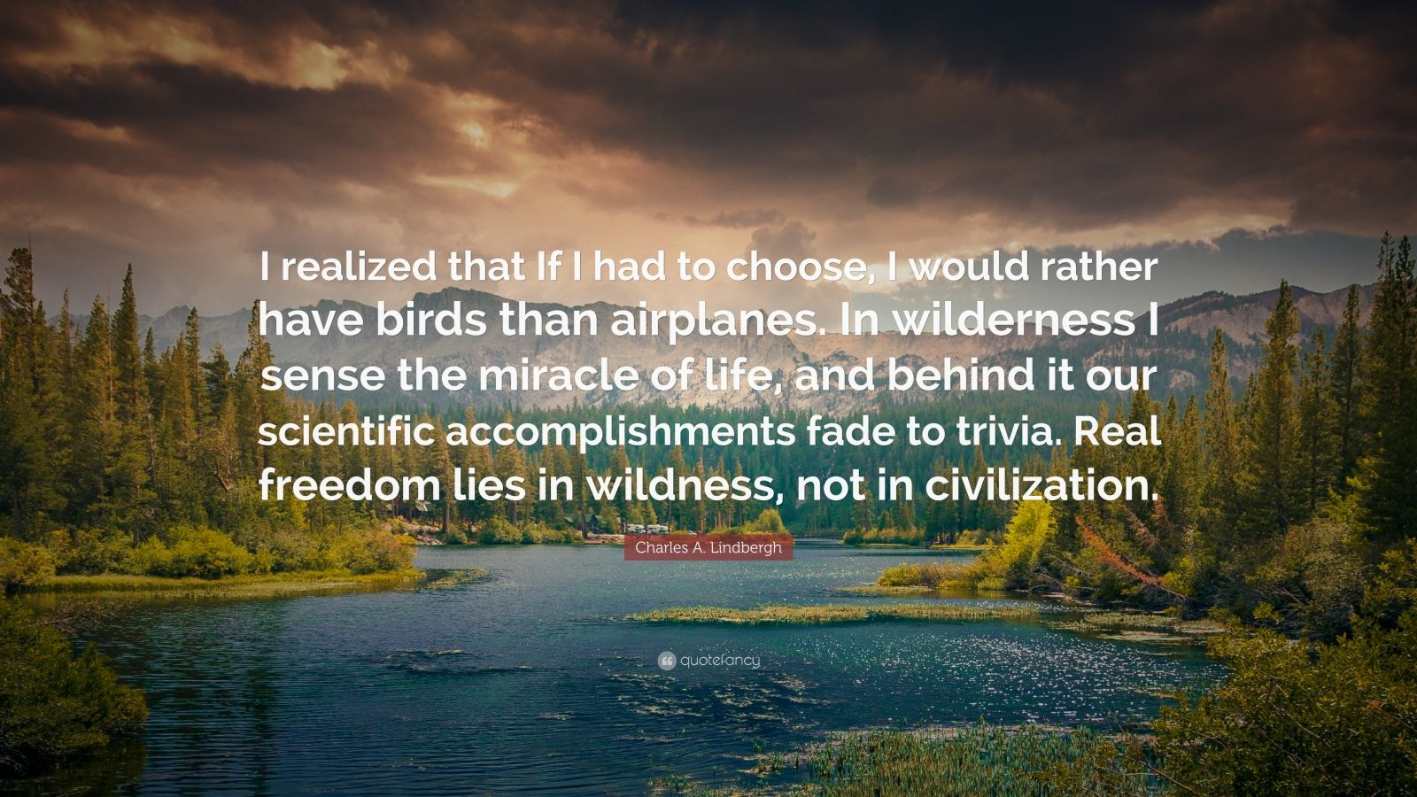 "Charles A. Lindbergh Quote: ""I realized that If I had to choose, I would rather have birds than airplanes.  In wilderness I sense the miracle of life, and behind it our scientific accomplishments fade to trivia. Real freedom lies in wildness, not in civilization."""