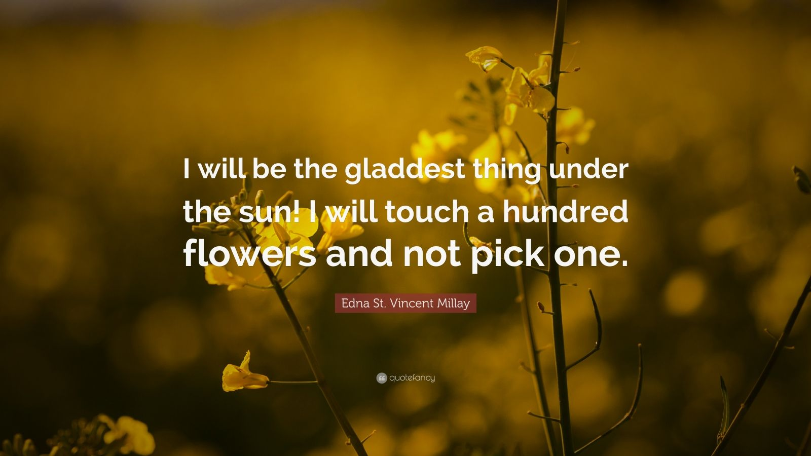 """Edna St. Vincent Millay Quote: """"I will be the gladdest thing under the sun! I will touch a hundred flowers and not pick one."""""""