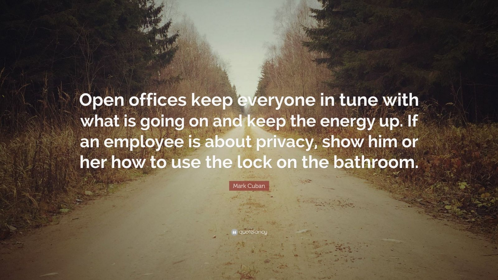 """Mark Cuban Quote: """"Open offices keep everyone in tune with what is going on and keep the energy up. If an employee is about privacy, show him or her how to use the lock on the bathroom."""""""