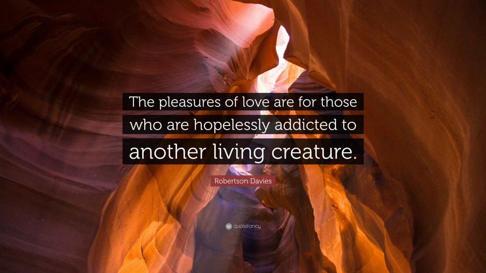 "Robertson Davies Quote: ""The pleasures of love are for those who are hopelessly addicted to another living creature."""