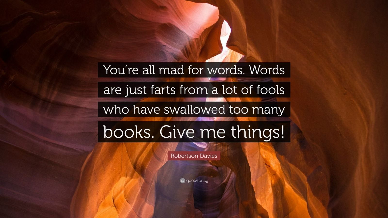 """Robertson Davies Quote: """"You're all mad for words. Words are just farts from a lot of fools who have swallowed too many books. Give me things!"""""""