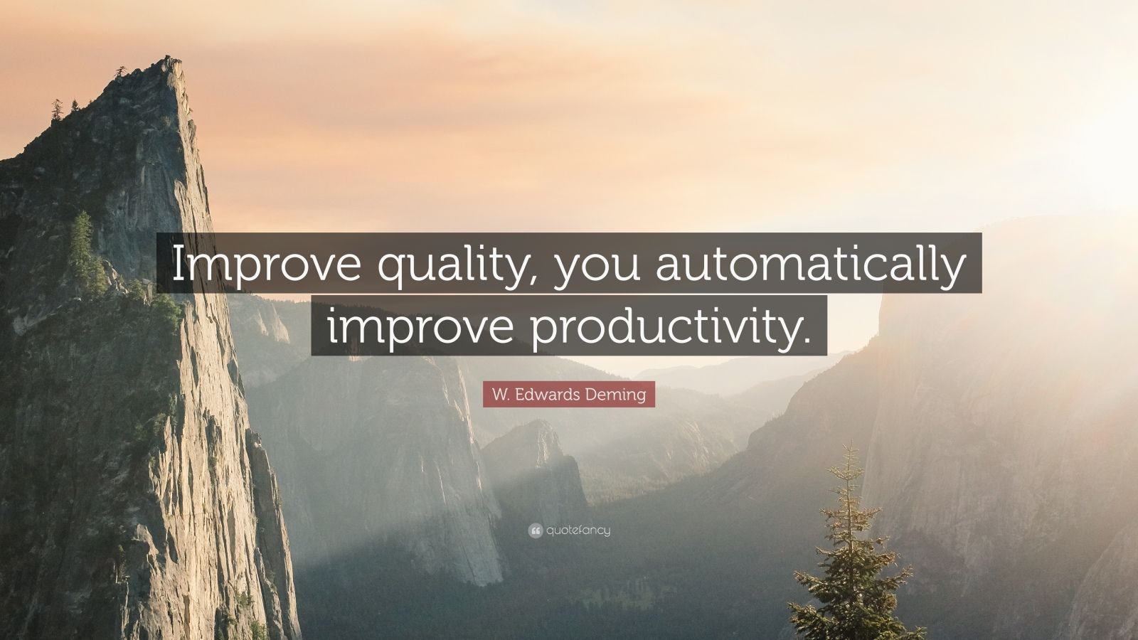 """Quality Quotes: """"Improve quality, you automatically improve productivity."""" — W. Edwards Deming"""