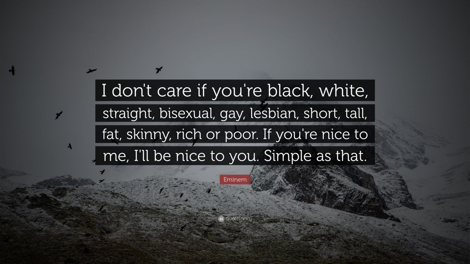 eminem quotes i dont care if your - photo #14