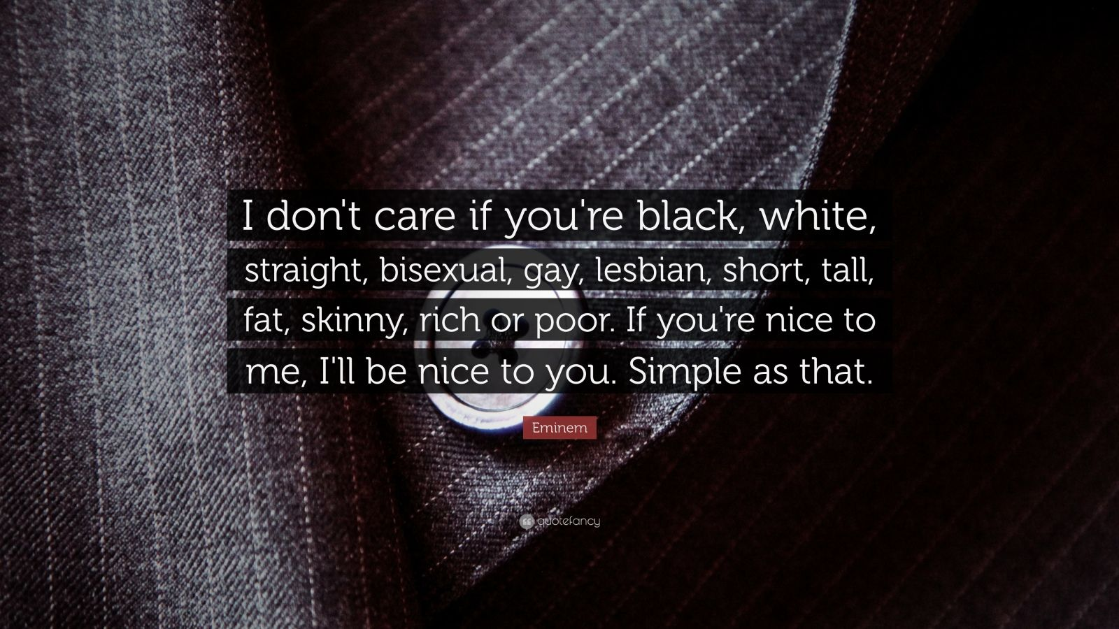 eminem quotes i dont care if your - photo #4