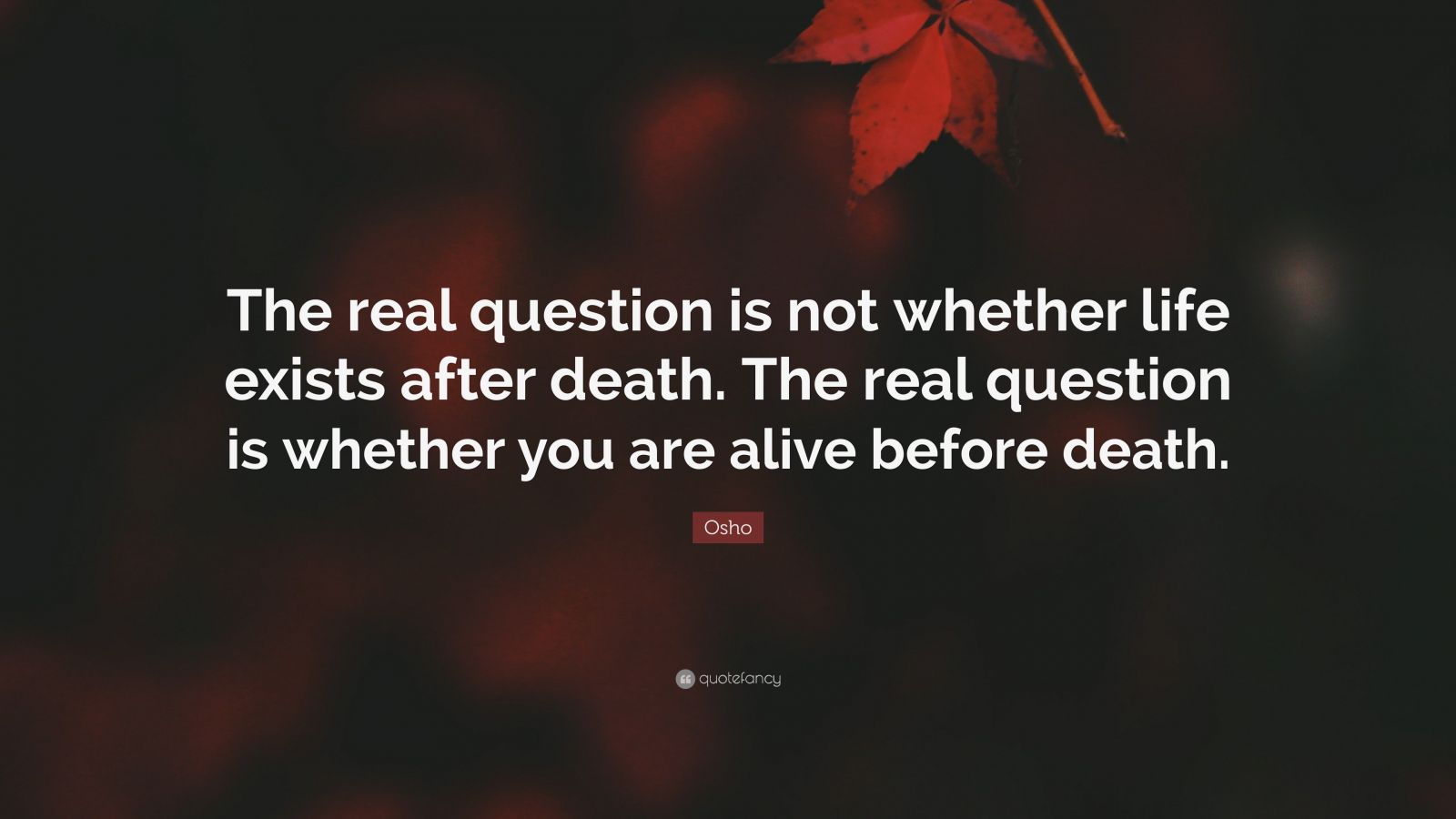 "Osho Quote: ""The real question is not whether life exists after death. The real question is whether you are alive before death."""