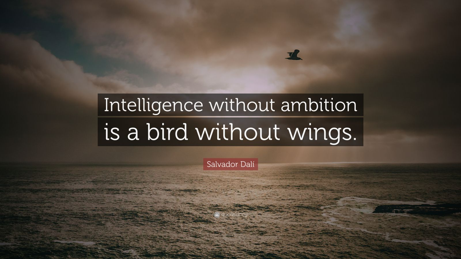 "Salvador Dalí Quote: ""Intelligence without ambition is a bird without wings."""