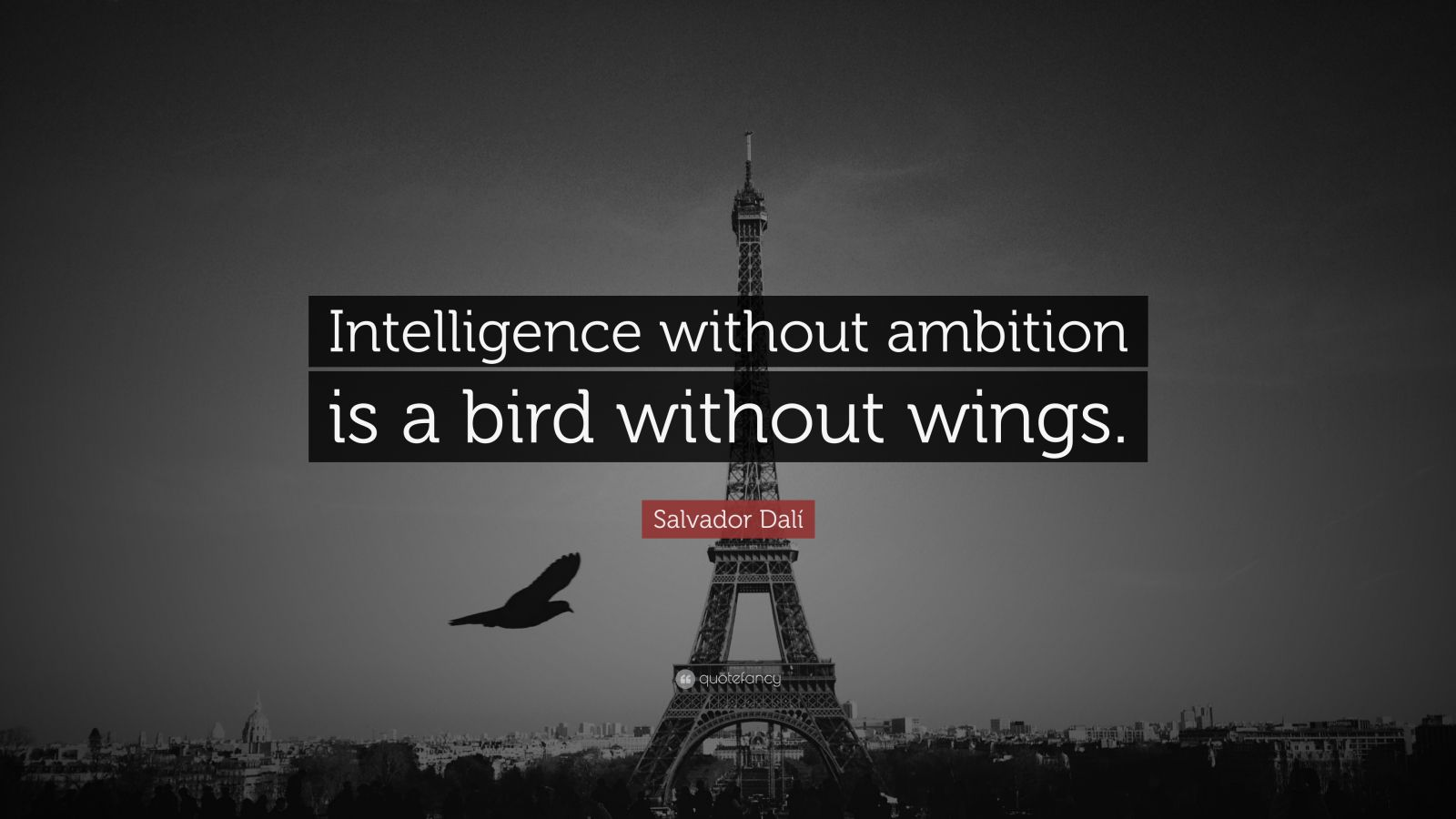 intelligence without ambition is a bird without wings essay May you find great value in these intelligence without ambition is a bird without wings  by salvador dali from my large inspirational quotes and sayings database.