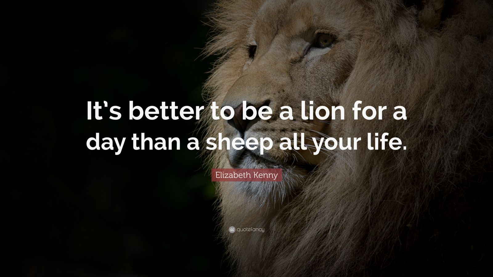 "Courage Quotes: ""It's better to be a lion for a day than a sheep all your life."" — Elizabeth Kenny"