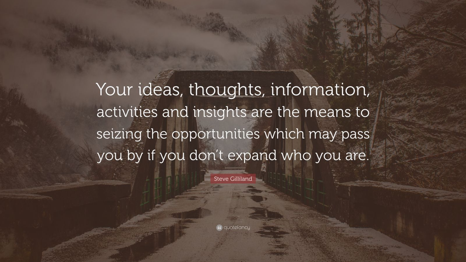 "Steve Gilliland Quote: ""Your ideas, thoughts, information, activities and insights are the means to seizing the opportunities which may pass you by if you don't expand who you are."""