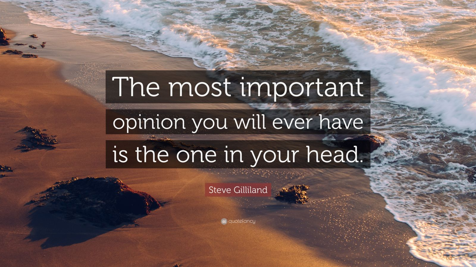 """Steve Gilliland Quote: """"The most important opinion you will ever have is the one in your head."""""""