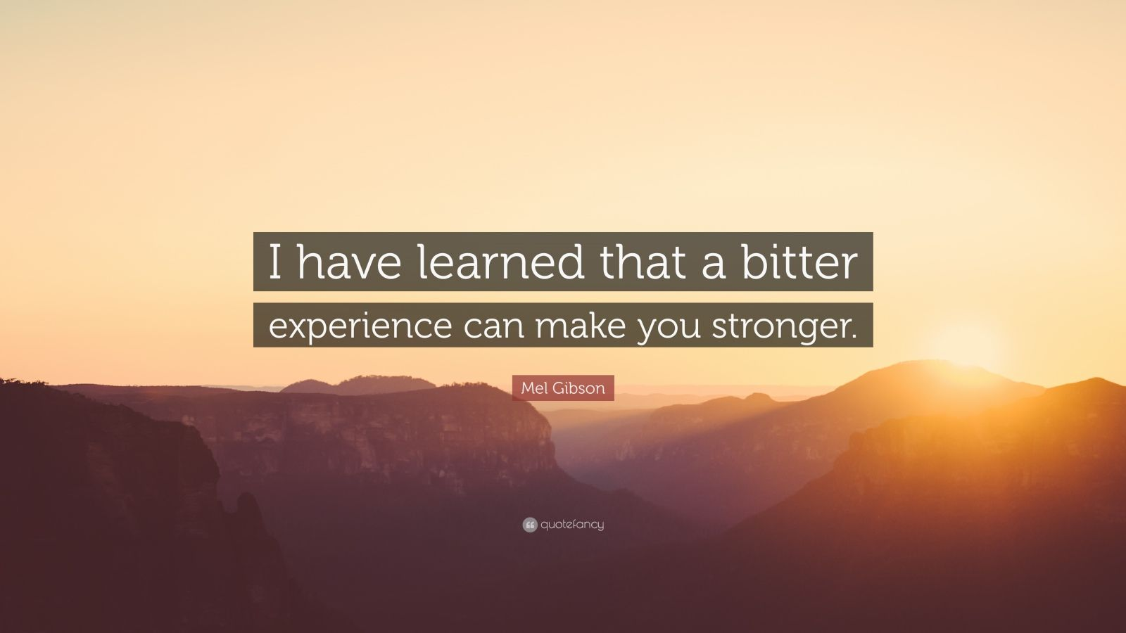 "Mel Gibson Quote: ""I have learned that a bitter experience can make you stronger."""