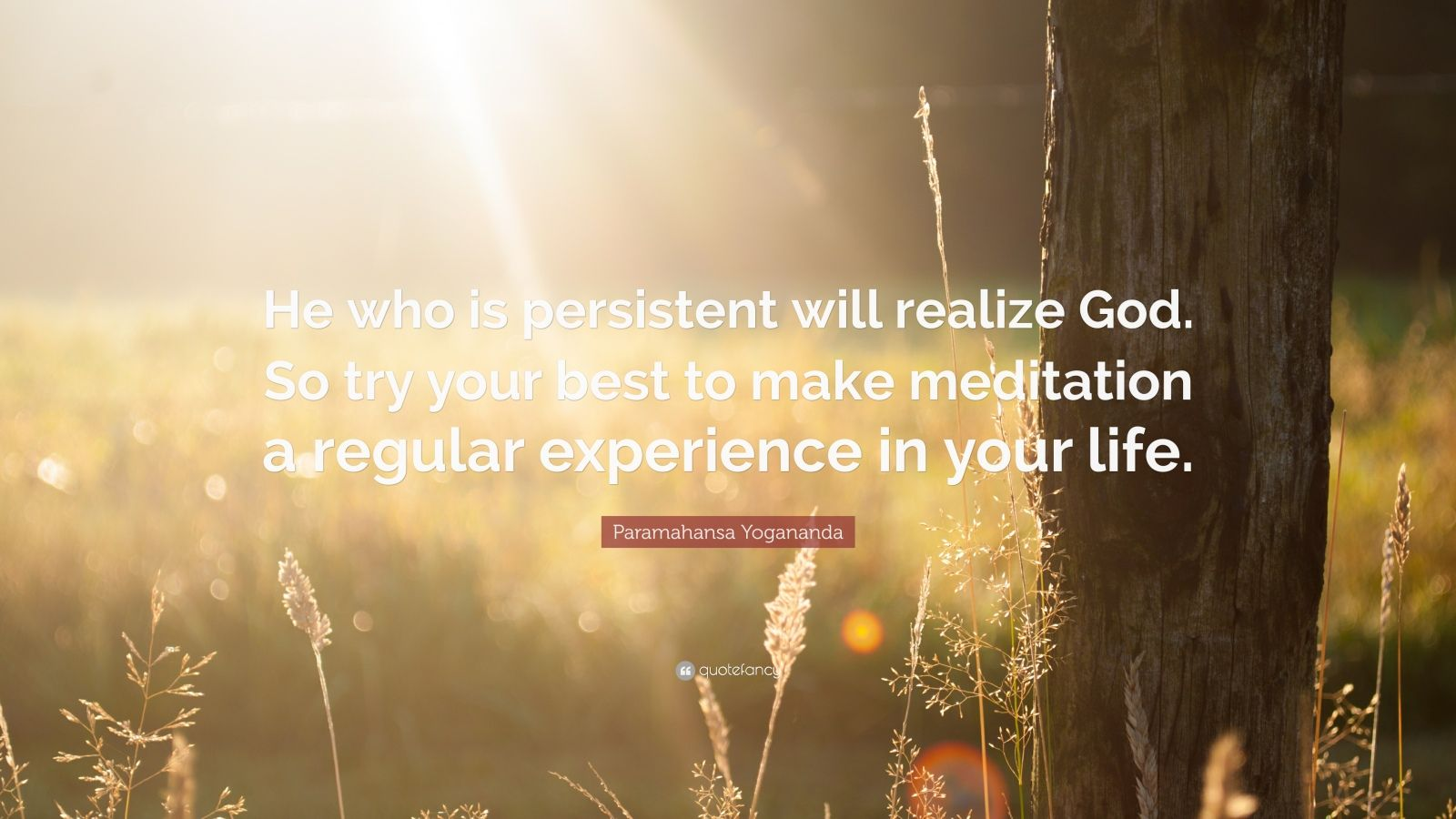 """Paramahansa Yogananda Quote: """"He who is persistent will realize God. So try your best to make meditation a regular experience in your life."""""""
