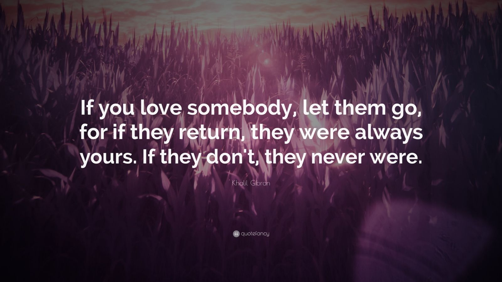 "Khalil Gibran Quote: ""If you love somebody, let them go, for if they return, they were always yours. If they don't, they never were."""