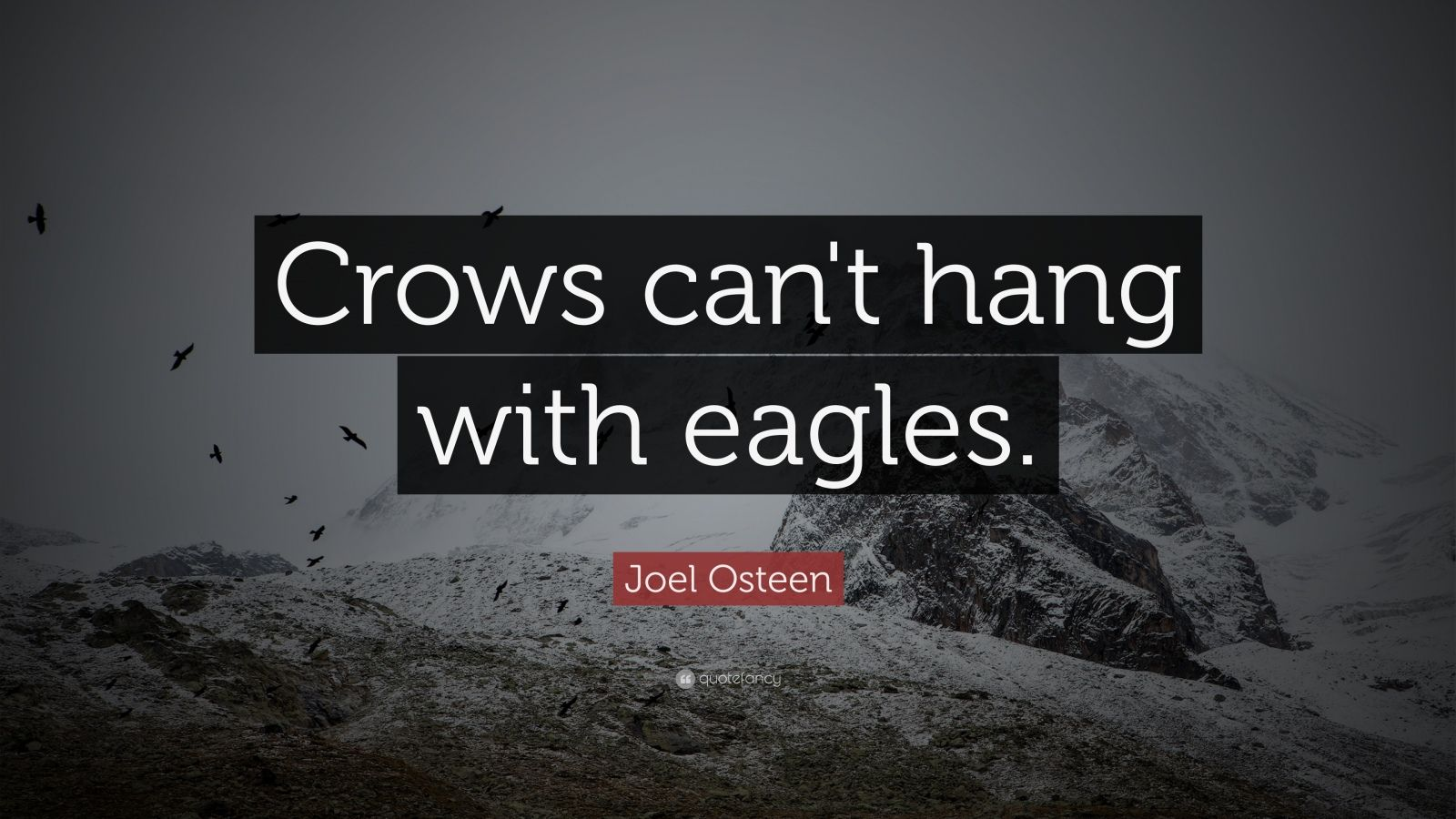 """Joel Osteen Quote: """"Crows can't hang with eagles."""""""