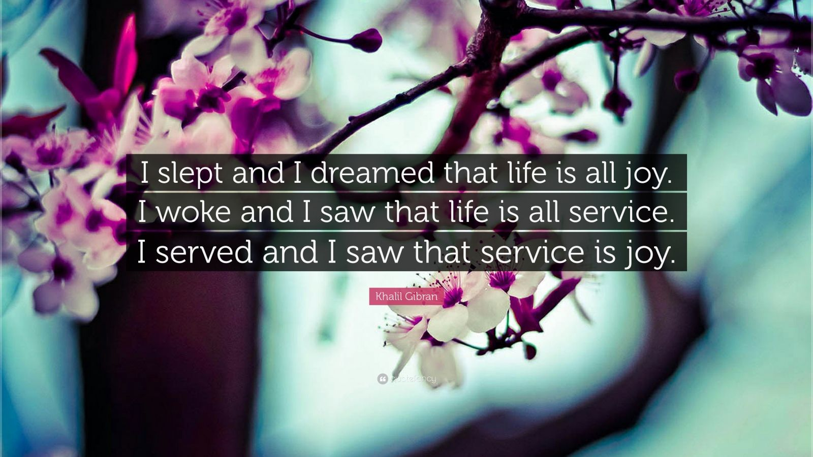 "Khalil Gibran Quote: ""I slept and I dreamed that life is all joy. I woke and I saw that life is all service. I served and I saw that service is joy."""