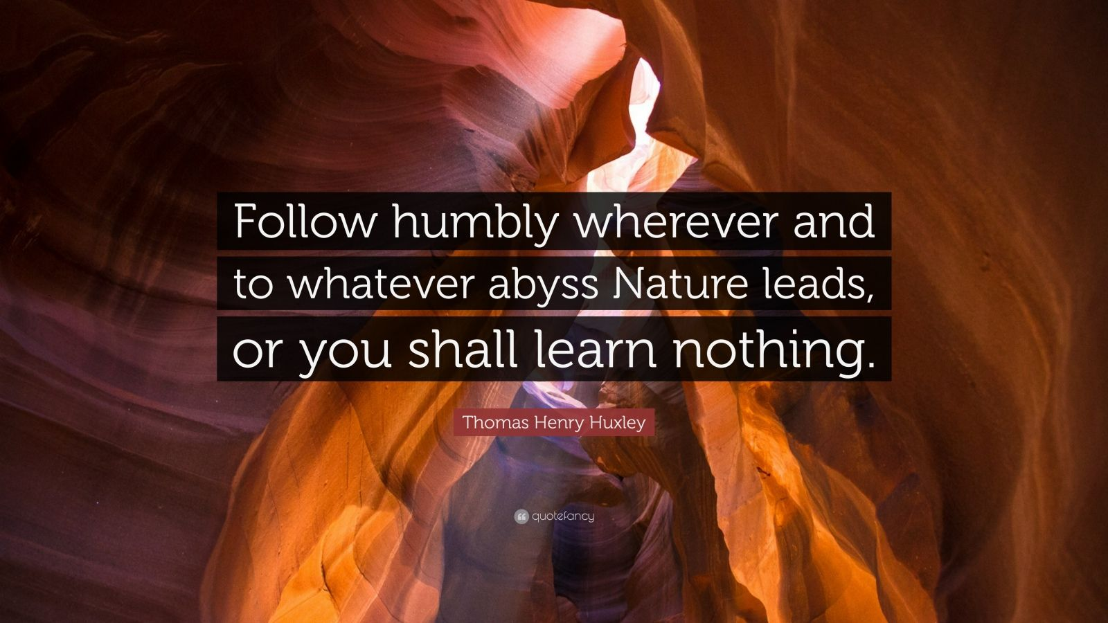 "Thomas Henry Huxley Quote: ""Follow humbly wherever and to whatever abyss Nature leads, or you shall learn nothing."""