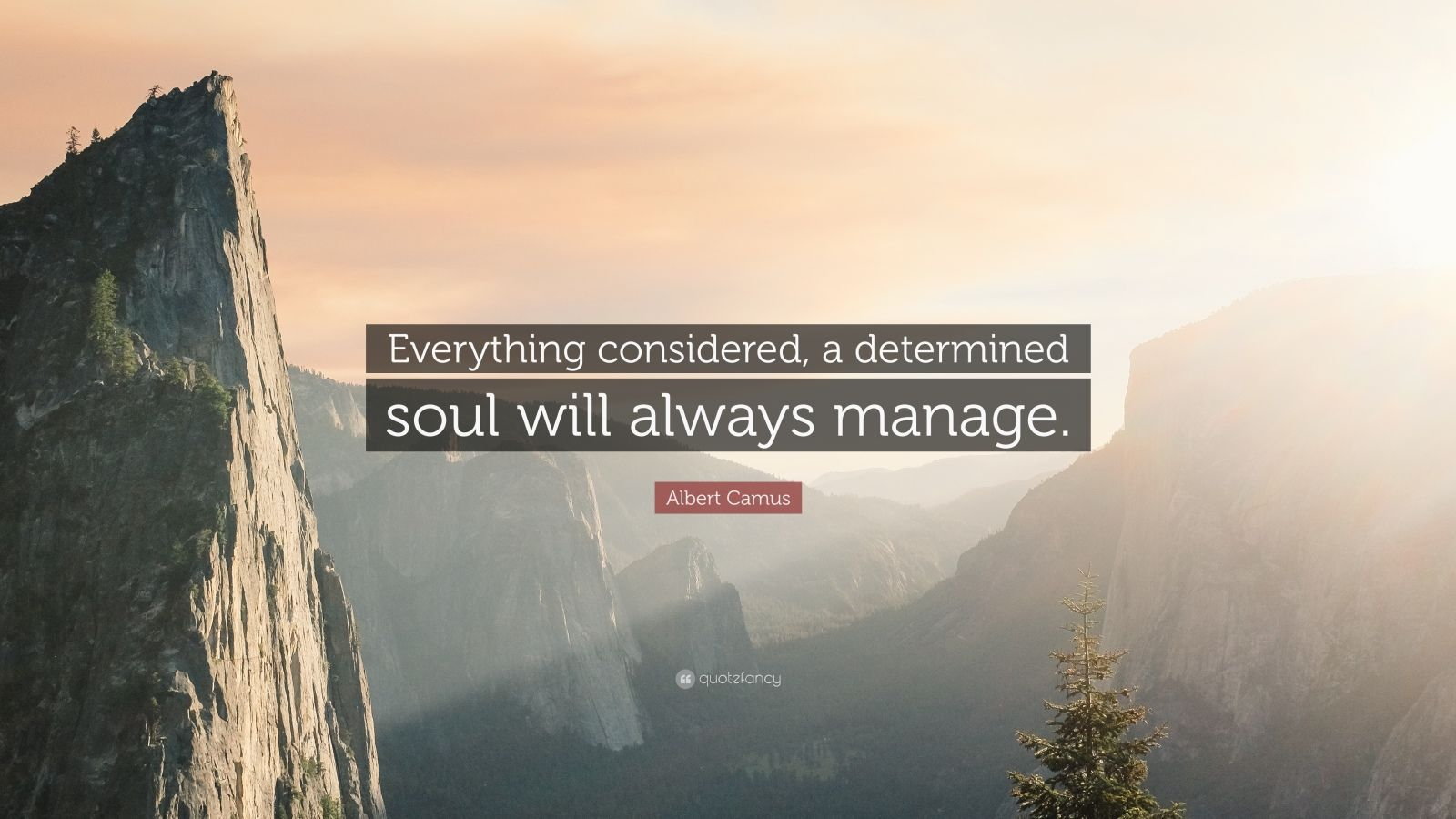 "Albert Camus Quote: ""Everything considered, a determined soul will always manage."""