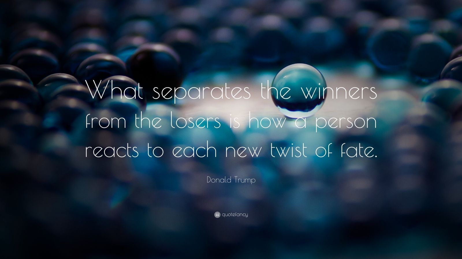 """Donald Trump Quote: """"What separates the winners from the losers is how a person reacts to each new twist of fate."""""""