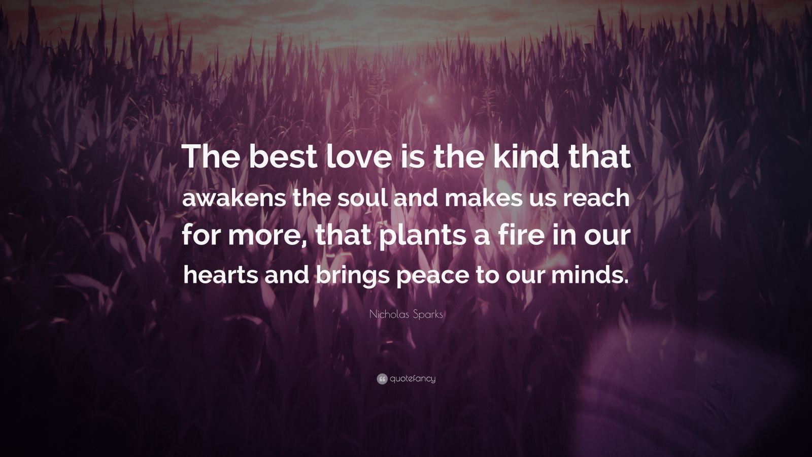 "Nicholas Sparks Quote: ""The best love is the kind that awakens the soul and makes us reach for more, that plants a fire in our hearts and brings peace to our minds. """