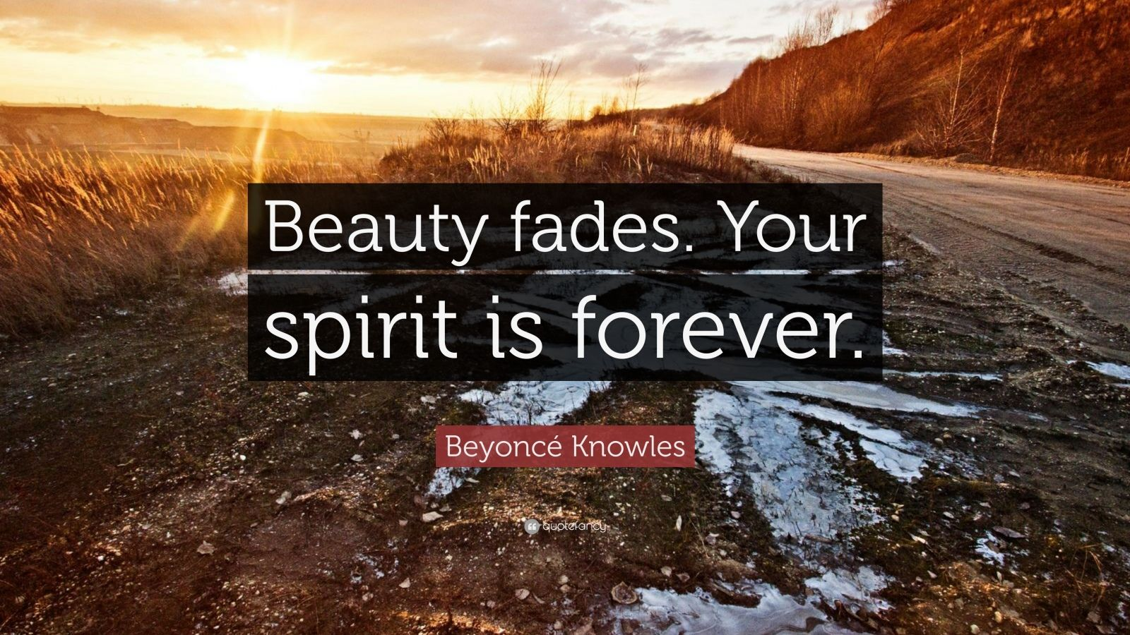 Image result for beauty fades