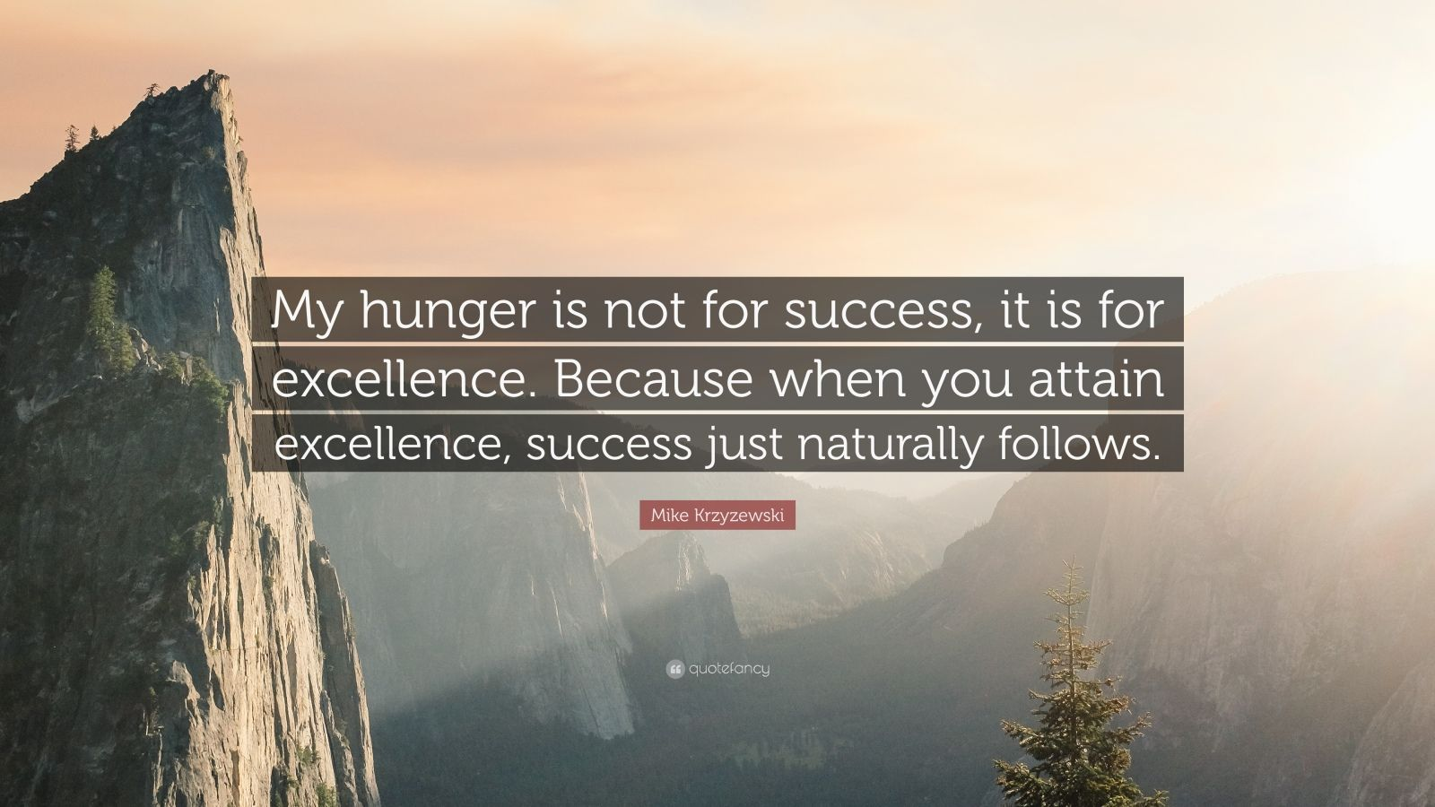 "Mike Krzyzewski Quote: ""My hunger is not for success, it is for excellence. Because when you attain excellence, success just naturally follows."""