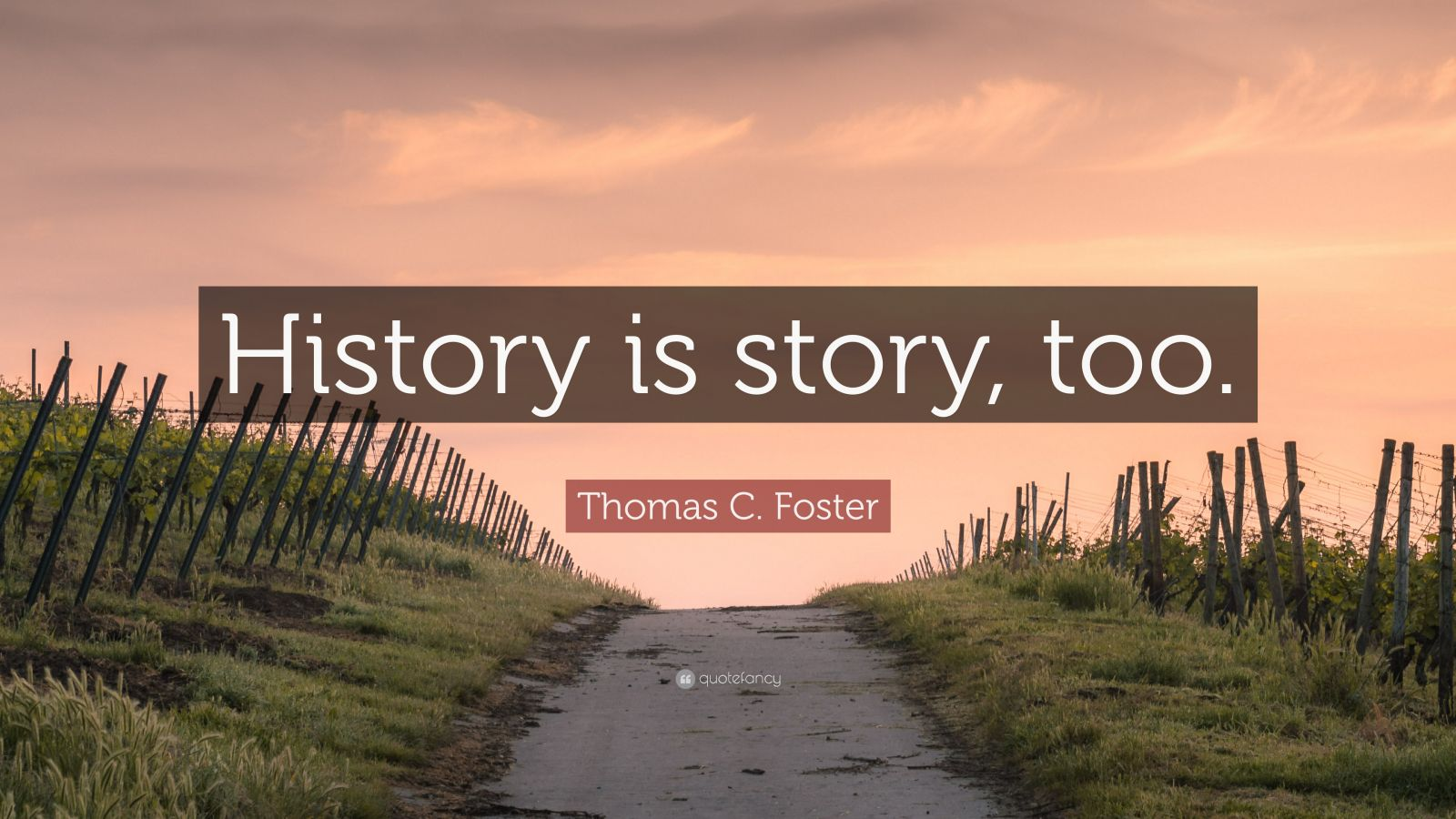 """Thomas C. Foster Quote: """"History is story, too."""" (2 ..."""