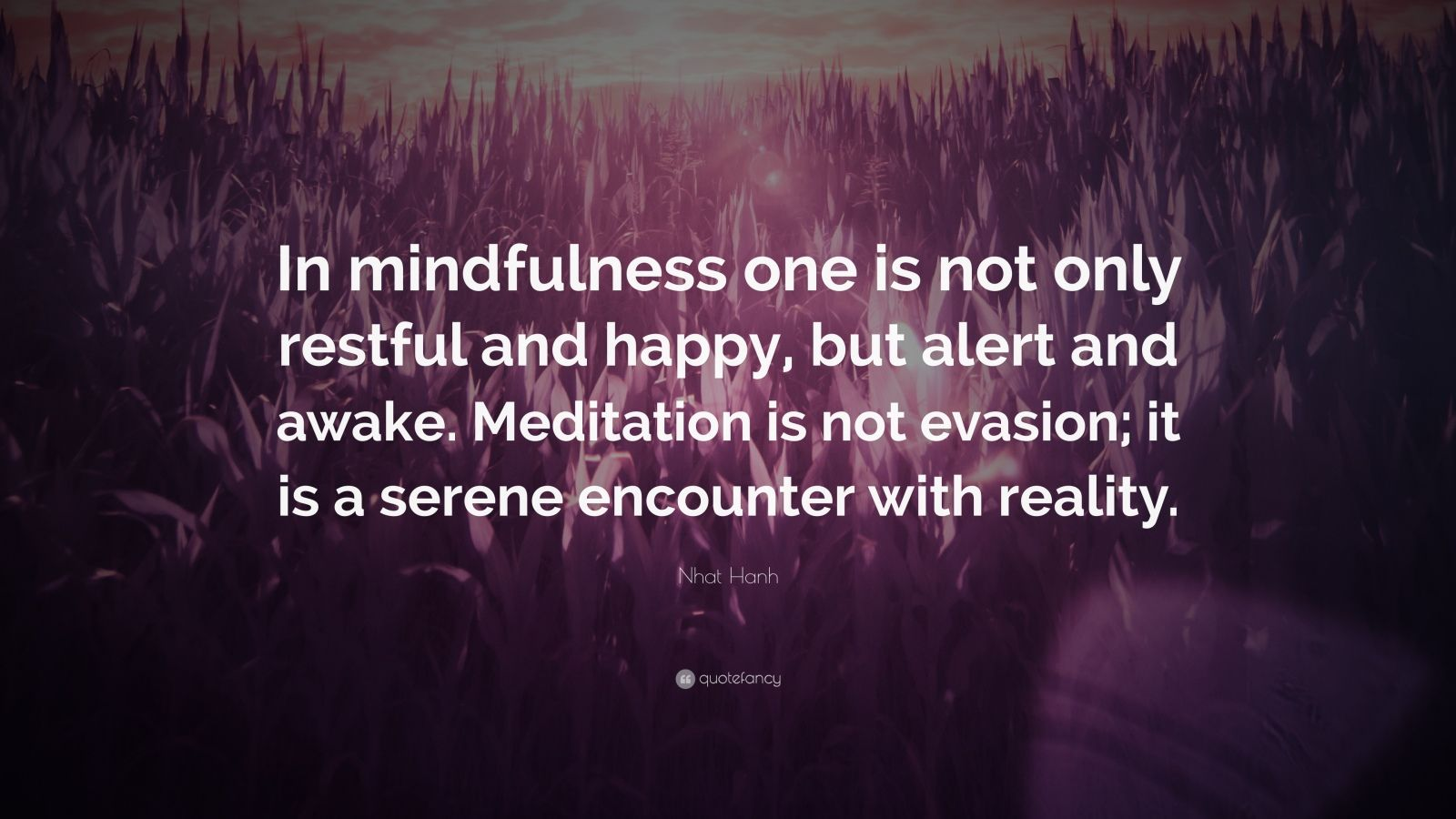 """Nhat Hanh Quote: """"In mindfulness one is not only restful and happy, but alert and awake. Meditation is not evasion; it is a serene encounter with reality."""""""