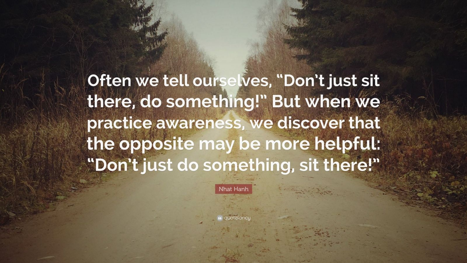 "Nhat Hanh Quote: ""Often we tell ourselves, ""Don't just sit there, do something!"" But when we practice awareness, we discover that the opposite may be more helpful: ""Don't just do something, sit there!"""""