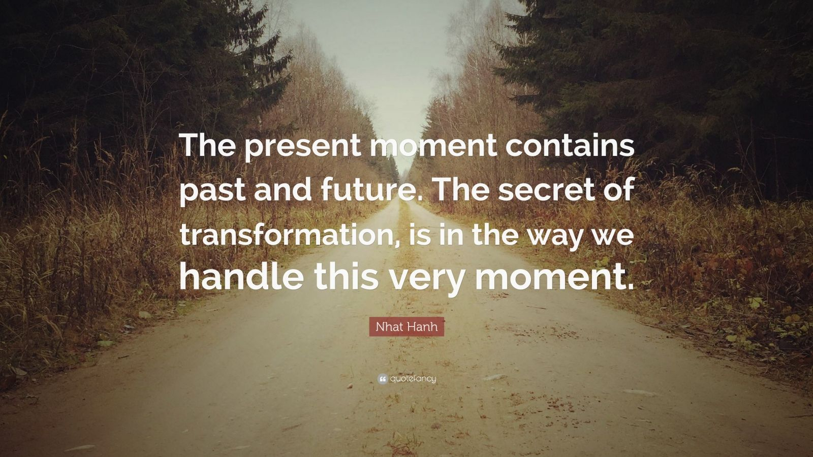 "Nhat Hanh Quote: ""The present moment contains past and future. The secret of transformation, is in the way we handle this very moment."""