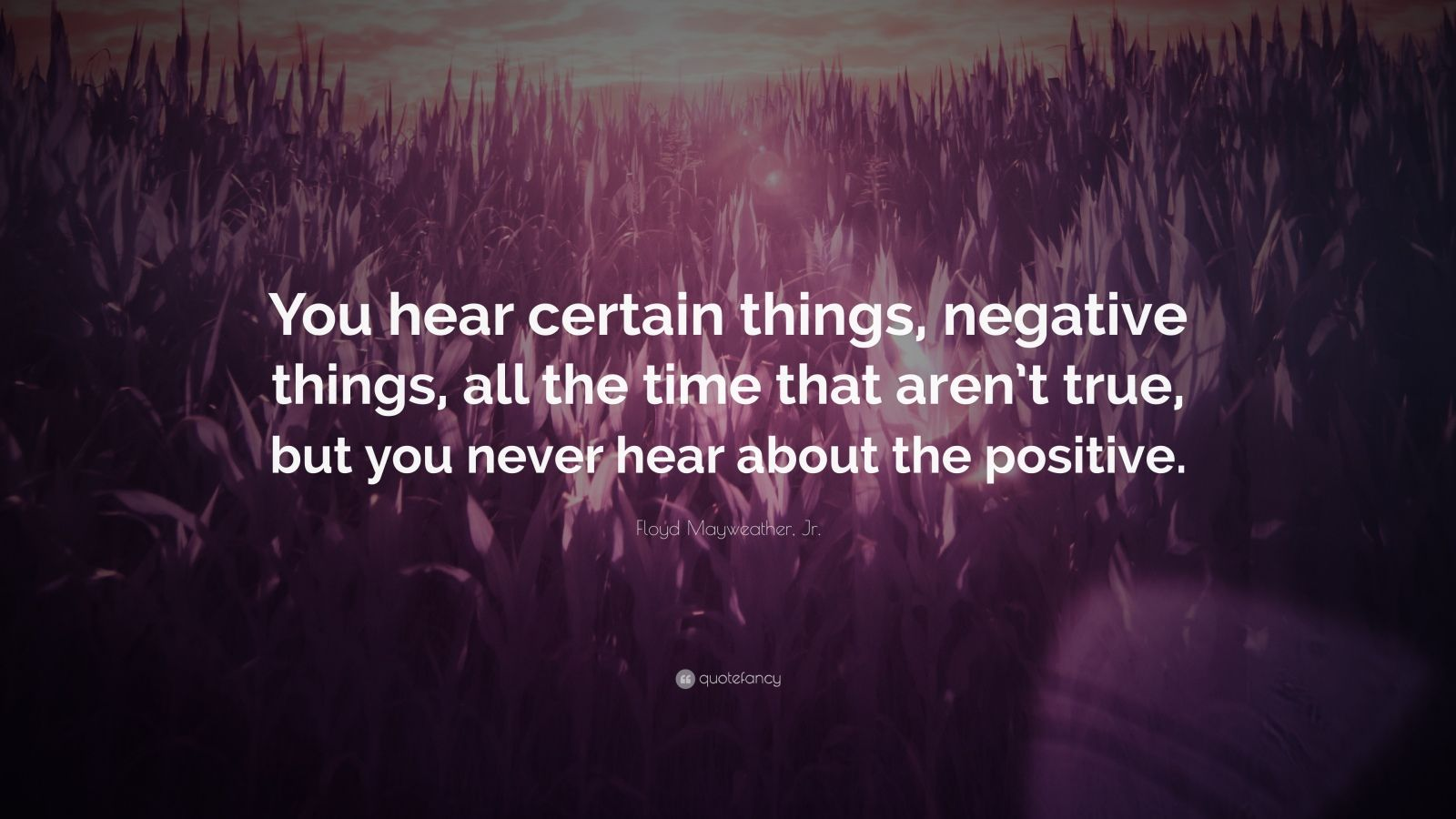"""Floyd Mayweather, Jr. Quote: """"You hear certain things, negative things, all the time that aren't true, but you never hear about the positive."""""""