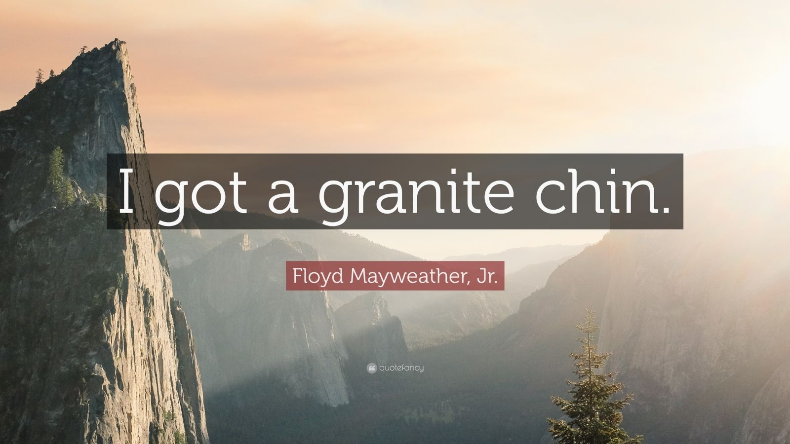"Floyd Mayweather, Jr. Quote: ""I got a granite chin."""