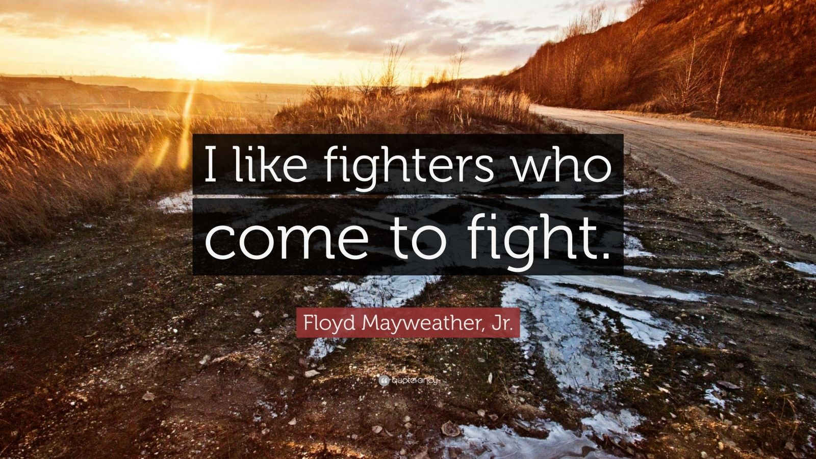 """Floyd Mayweather, Jr. Quote: """"I like fighters who come to fight."""""""