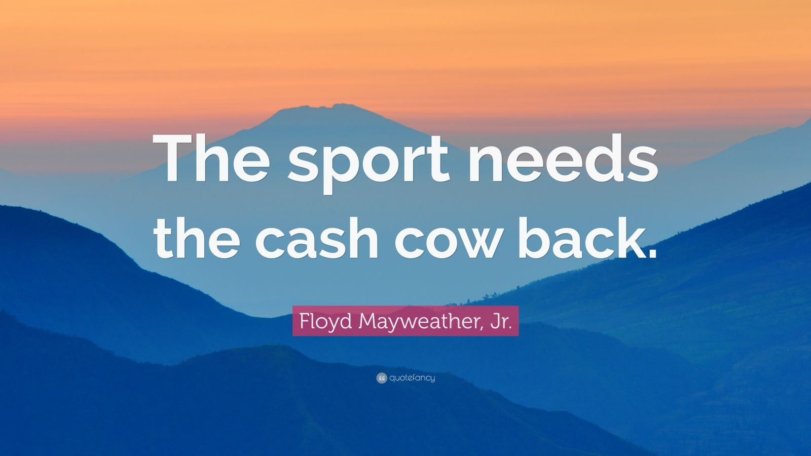 """Floyd Mayweather, Jr. Quote: """"The sport needs the cash cow back."""""""