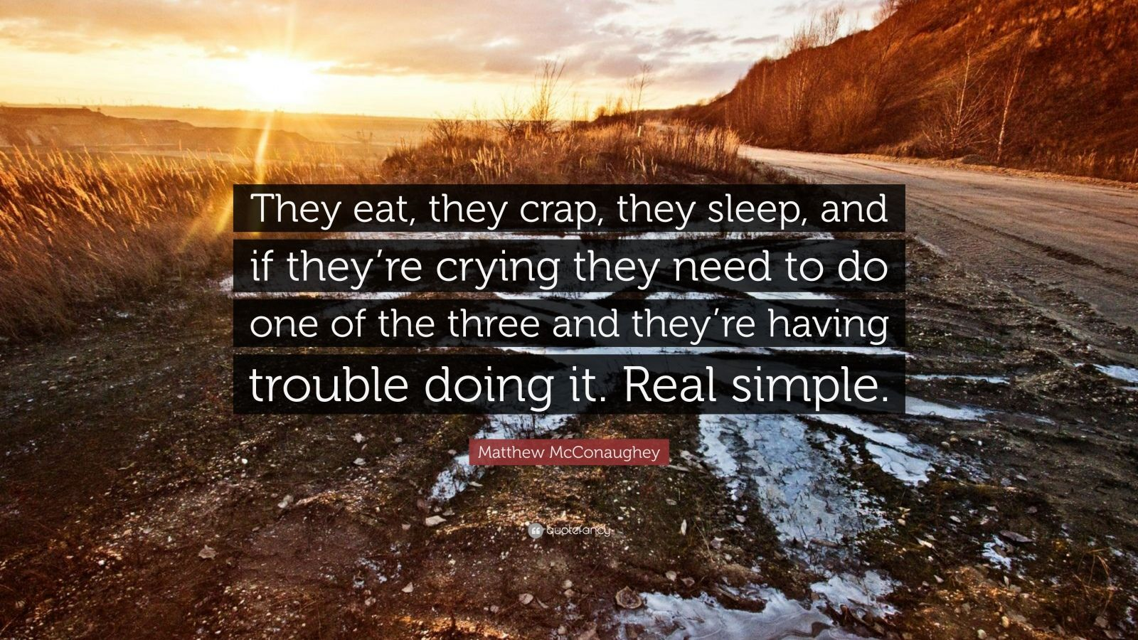 "Matthew McConaughey Quote: ""They eat, they crap, they sleep, and if they're crying they need to do one of the three and they're having trouble doing it. Real simple."""
