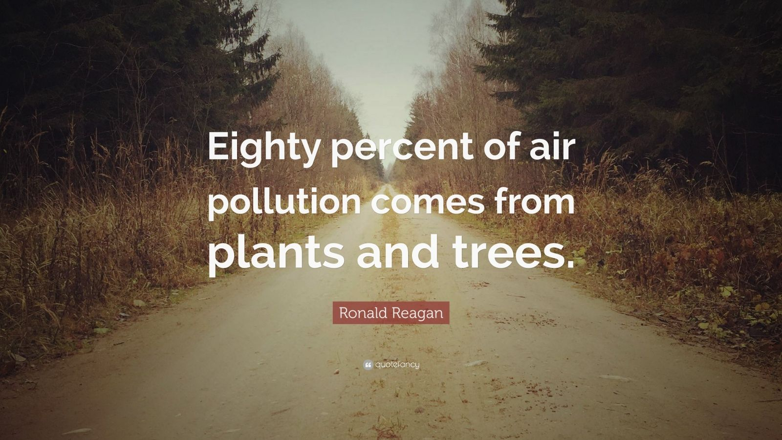 Ronald Reagan Quote Eighty Percent Of Air Pollution Comes From