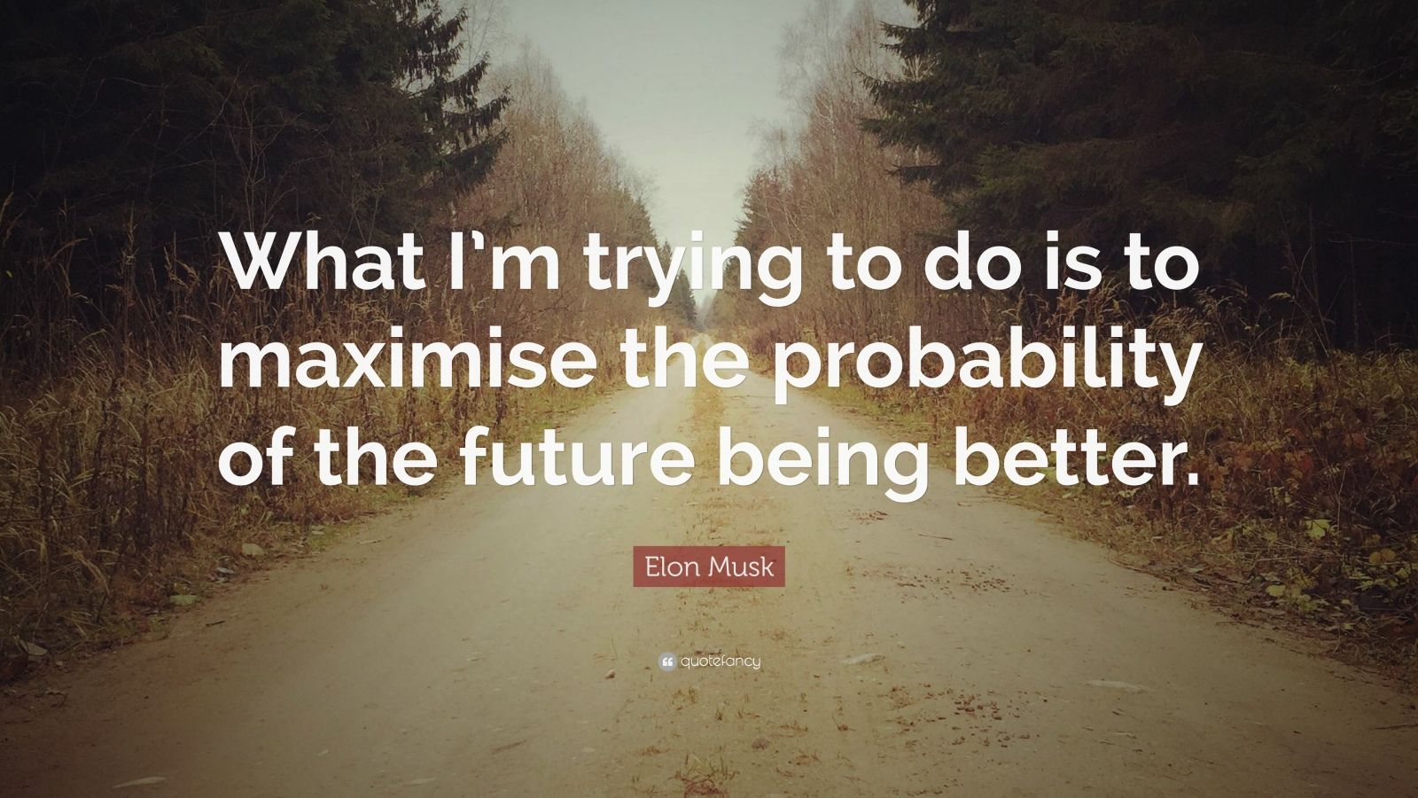 "Elon Musk Quote: ""What I'm trying to do is to maximise the probability of the future being better."""