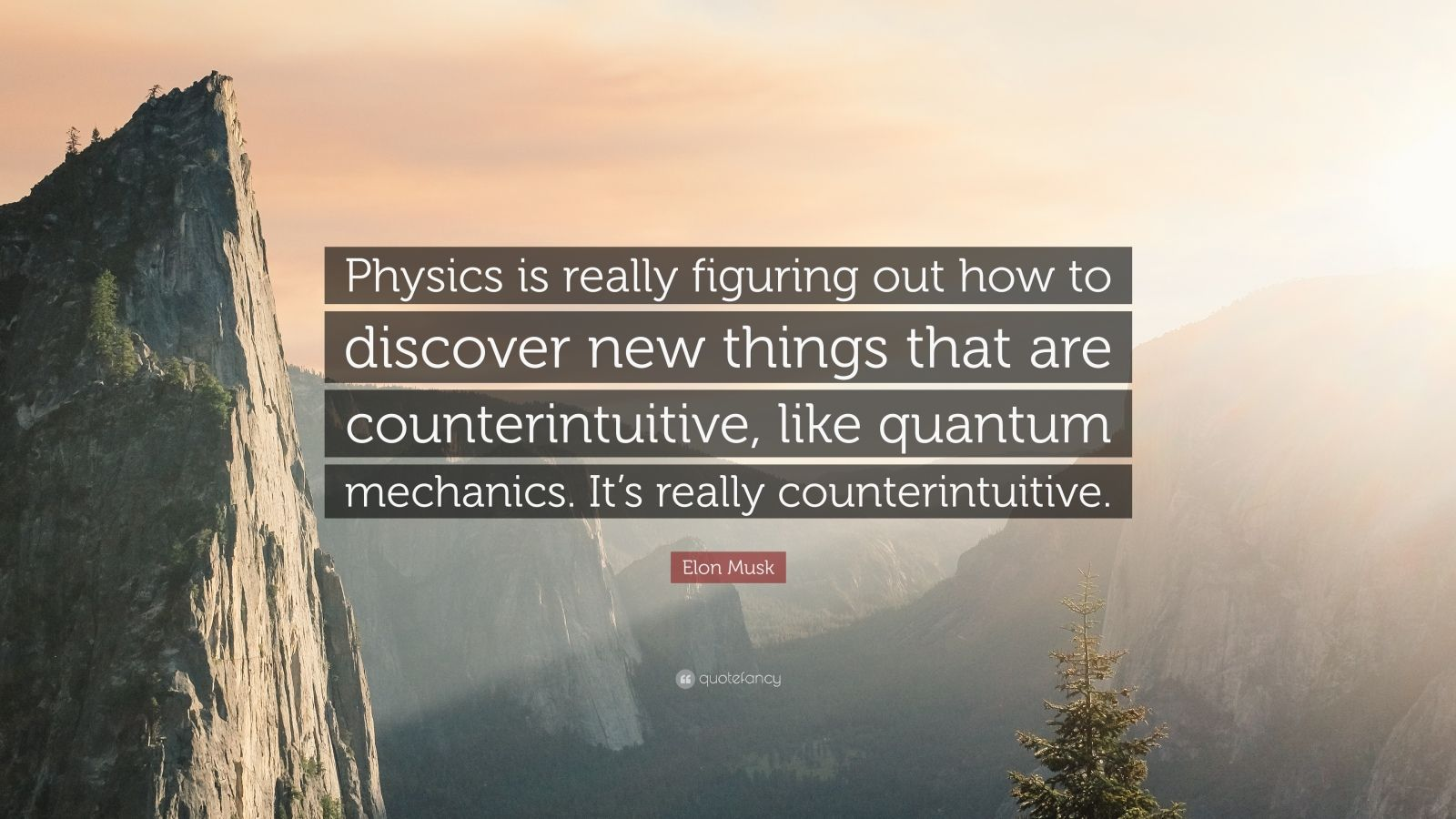 "Elon Musk Quote: ""Physics is really figuring out how to discover new things that are counterintuitive, like quantum mechanics. It's really counterintuitive."""